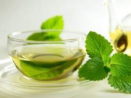 Чай з м'ятою. Корисні властивості і рецепти приготування