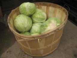 Рецепт маринованої капусти на зиму