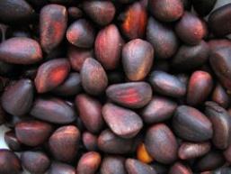 Кедрові горіхи