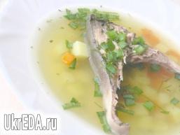 Суп з судака