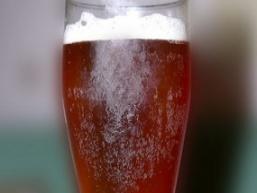 Пиво домашнє